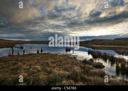 Une fen à distance sur l'île de Skye, dans les Hébrides extérieures d'Écosse, au lever du soleil Banque D'Images
