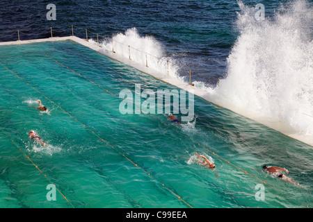 Les nageurs faire des longueurs au bain de Bondi - Accueil à l'Icebergs de Bondi swimming club. Sydney, New South Banque D'Images