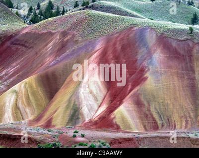 Collines peintes. John jour Foissil jumeaux National Monument. Oregon