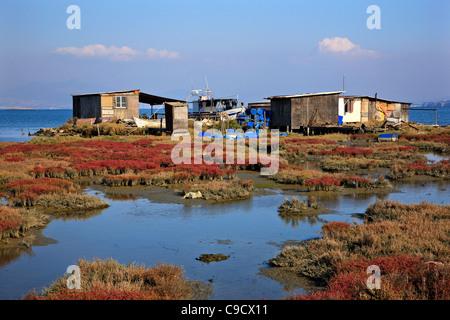Cabanes sur pilotis dans le Delta de l'Axios (aussi connu comme 'Vardaris') Rivière, Thessalonique, Macédoine, Grèce Banque D'Images