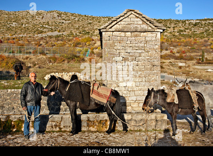Cabanes sur pilotis, dans le Delta de l'Axios (aussi connu comme 'Vardaris') Rivière, Thessalonique, Macédoine, Banque D'Images