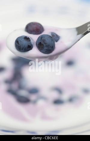 Close up de bleuets et de yaourt Banque D'Images