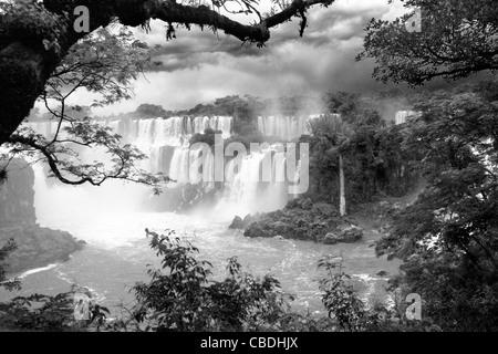 D'Iguazu, le long de la rivière Iguaçu. Placé dans la frontière de l'Argentine, et au Brésil. Banque D'Images