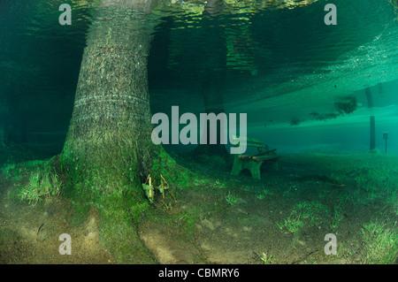 Banc en bois en sortie de Green Lake, Tragoess, Styrie, Autriche Banque D'Images