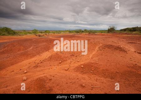 Zone déboisée et le sol érodé en Sarigua national park (désert) dans la province de Herrera, République du Panama.