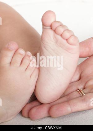 Baby foot dans les mains de la mère sur fond blanc Banque D'Images