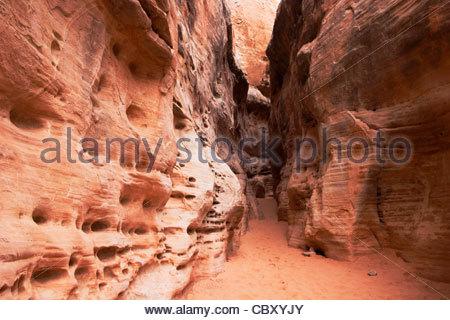 Coupoles blanches Logement Sentier Canyon, Vallée de Feu Park, Nevada Banque D'Images