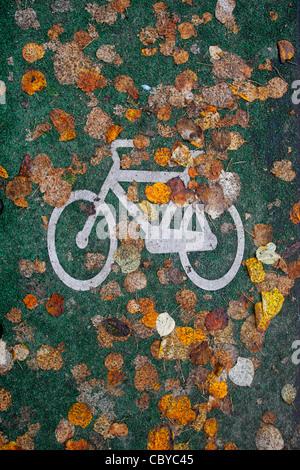 Feuilles d'automne sur une bande cyclable Banque D'Images