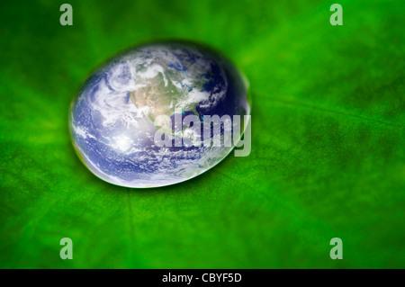 La planète terre waterdrop sur feuille de lotus. Photo de la terre à crédit: http://visibleearth.nasa.gov Banque D'Images