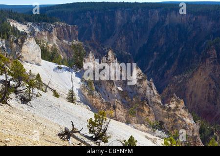 Grand canyon de Yellowstone Banque D'Images