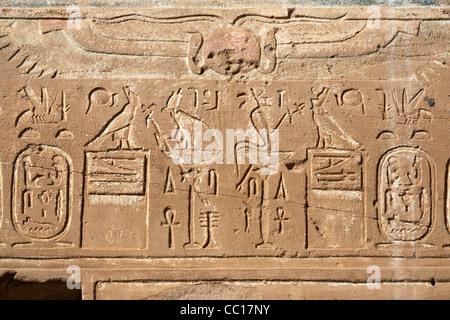 Close up des franchises à l'Hibis Temple, l'ancienne capitale de Kharga Oasis, Désert occidental de l'Égypte Banque D'Images