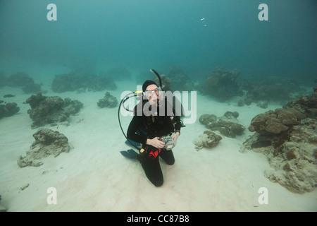 Scuba Diver en attente d'une raie Manta géante (Manta birostris) près de la station de nettoyage des raies manta Banque D'Images