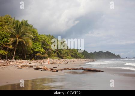 Playa Grande, une longue plage de sable près de Montezuma, Péninsule de Nicoya, Costa Rica, Amérique Centrale Banque D'Images