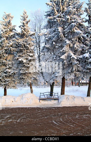 Banc dans winter park Banque D'Images