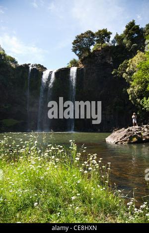 Une personne debout à la base de Whangarei Falls sur la rivière Hatea, Northland, Nouvelle-Zélande, île du Nord. Banque D'Images
