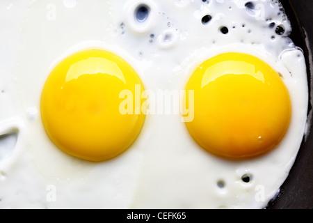 Deux œufs frits sur pan close up Banque D'Images