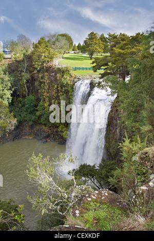 Whangarei Falls, sur la rivière Hatea, île du Nord, en Nouvelle-Zélande. Banque D'Images
