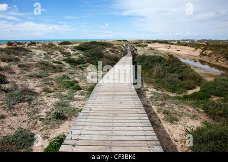 Passerelle en bois dans les dunes près de San Fernando, Andalousie Espagne Banque D'Images