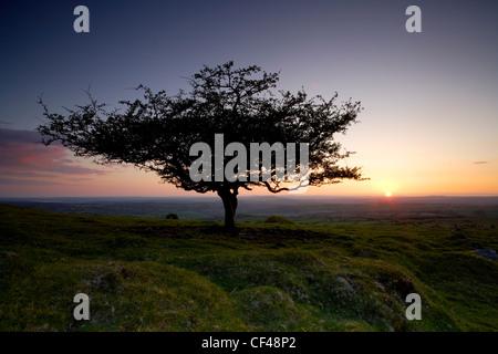 Un coucher de soleil sur l'atmosphère à Lone Tree Hill Peek sur Dartmoor. Banque D'Images