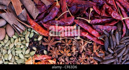 La cuisine des épices indiennes. Mise à plat de la photographie ci-dessus. Vue panoramique Banque D'Images