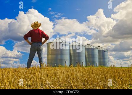 Un homme donne sur un champ de chaumes de céréales et de bacs de stockage du grain près de Carey, Manitoba, Canada Banque D'Images