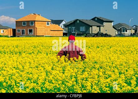 Un agriculteur donne sur son champ de canola en fleurs avec l'étalement urbain dans l'arrière-plan, Winnipeg, Manitoba, Canada