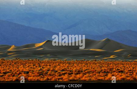 Dunes de sable, Stovepipe Wells, Death Valley National Park, la plus chaude et la plus sèche des parcs nationaux aux Etats-Unis, Californie, États-Unis
