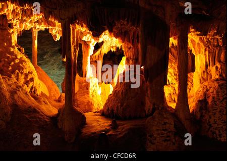 Cango Caves près de Oudtshoorn, Western Cape, Afrique du Sud Banque D'Images