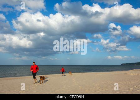L'homme et la femme jogging avec les chiens sur la plage, station balnéaire Baabe, Ruegen island, mer Baltique, Banque D'Images