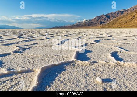Les polygones de sel du bassin de Badwater à pan, Death Valley National Park, California, USA
