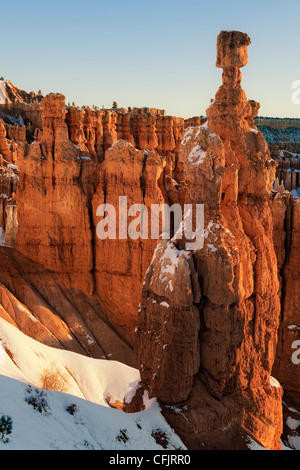 Première réfléchissant la lumière illumine les cheminées, dont le marteau de Thor dans l'Utah Bryce Canyon National Banque D'Images