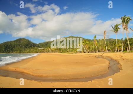 Mission Beach, Queensland, Australie, Pacifique Banque D'Images