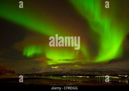 Aurora Borealis ou northern lights vu au cours des Alpes de Lyngen et Ullsfjord, Troms, Norvège du Nord, Europe Banque D'Images