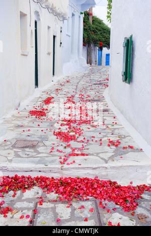 Bougainvillea tombé dans une allée de pétales le village de Chora, sur l'île grecque de l'île d'Amorgos. Banque D'Images