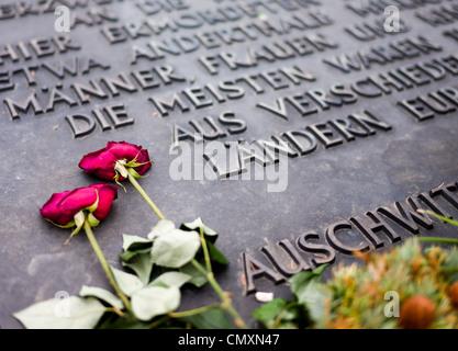 Roses rouges placés sur l'Auschwitz II Birkenau, Memorial, Pologne