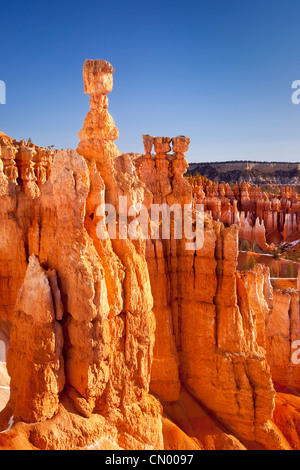 Thor's Hammer rock formation à Sunset Point, Bryce Canyon National Park, Utah USA Banque D'Images