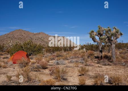 Tente dans le parc national Joshua Tree, California, USA