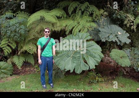 Homme debout par de grandes feuilles, Poas Volcano National Park, Costa Rica