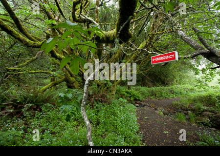 Panneau d'urgence en forêt Banque D'Images