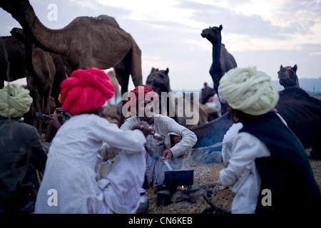 Les éleveurs de chameaux Rajasthani pendant un plateau/Camel fair festival annuel à Pushkar. Banque D'Images