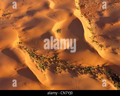 Photo aérienne de basse altitude des dunes de sable rouge de l'outback, NSW, Australie Banque D'Images