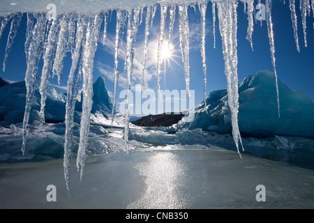 Soleil brille à travers les glaçons suspendus au bord d'un iceberg dans la surface gelée du lac Mendenhall, Alaska Banque D'Images