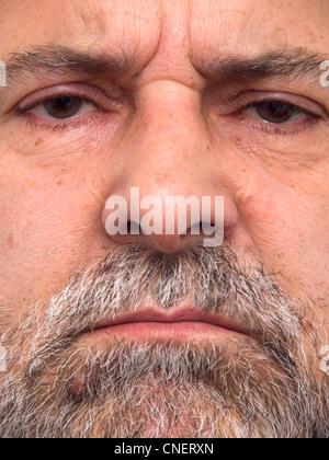 Extreme close up portrait of barbu Banque D'Images
