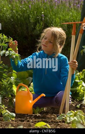 8 ans girl gardening, France Banque D'Images