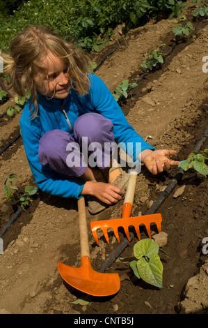 8 ans, fille, jardinage, planter des citrouilles, France Banque D'Images
