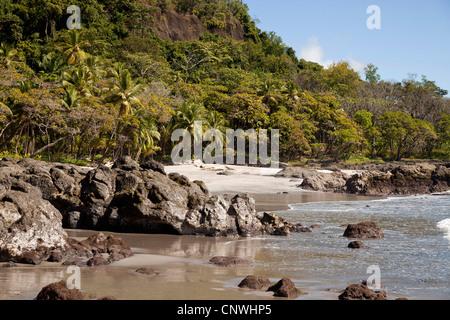 Plage de sable d'Ylang Ylang, hôtel près de Montezuma, Péninsule de Nicoya, Costa Rica, Amérique Centrale Banque D'Images