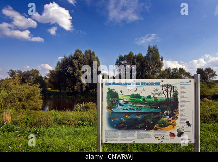 Informations générales Inscription à propos de la rivière Ruhr et ses créatures, l'Allemagne, en Rhénanie du Nord Banque D'Images