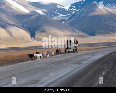 Équipe de chiens tirant un wagon avec des touristes sur une route déserte, la Norvège, Svalbard, Longyearbyen Banque D'Images