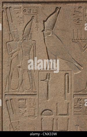 Dieu Horus. Dans la décharge de désinstallé obélisque de la reine Hatchepsout dans le complexe du temple de Karnak Banque D'Images