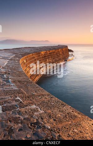 Le mur du port historique de pierre de Cobb à Lyme Regis, dans le Dorset, Angleterre. Hiver (décembre) 2010. Banque D'Images